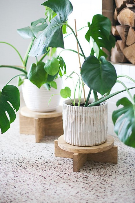 5 Amazing Tips To Use Modern Wooden Plant Stand You Must See